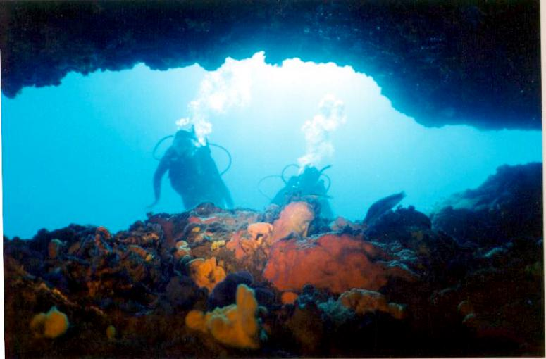 Cave and divers